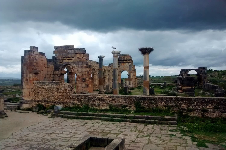 ruínas romanas de volubilis em morocco