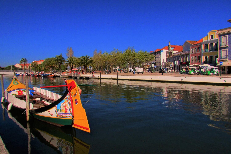 tradicionais barcos moliceiros em aveiro