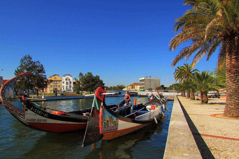 tradicionais barcos moliceiro na ria de Aveiro