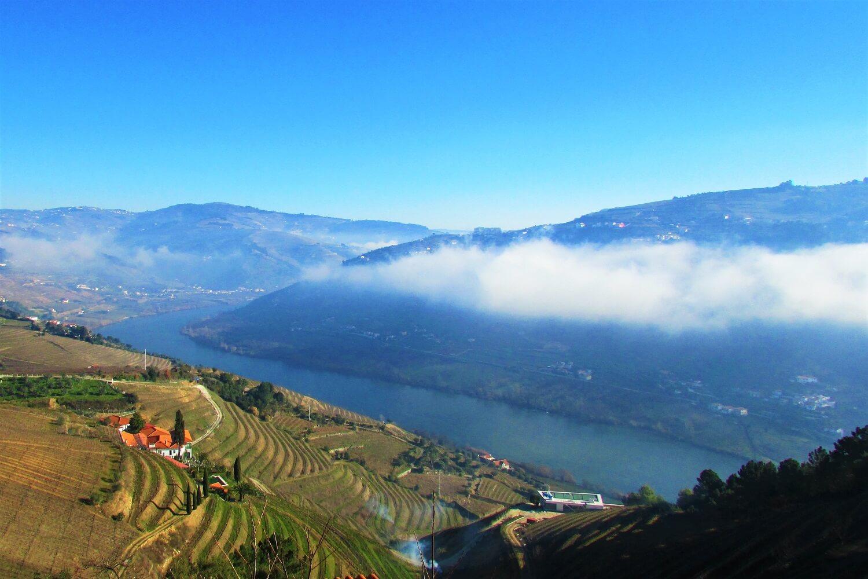 neblina matinal no vale do douro
