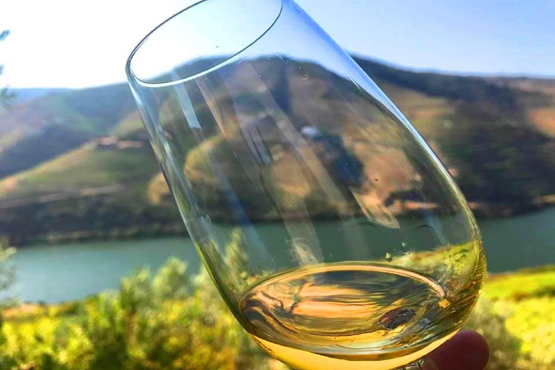 Vinho Verde Tour (Green Wine) • Enne Tours